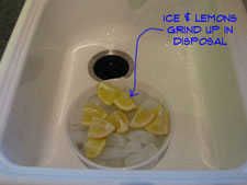 garbage-disposal-odor-pic3